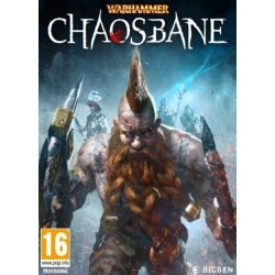 Warhammer. Chaosbane (PC)